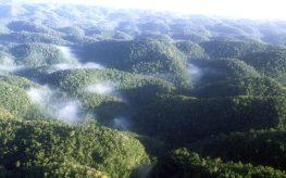 cropped-cc-jf-photo-3-beautiful-misty11.jpg