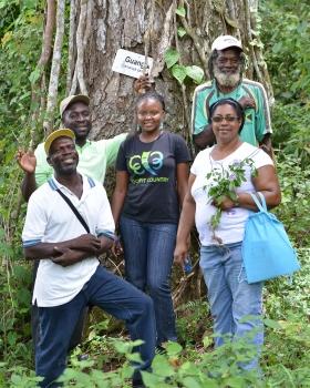 Flagstaff, Jamaica